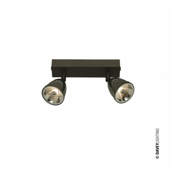 Reflektor sufitowy DP0764/BR/WE/2420 0764 DOUBLE SPOTLIGHTS WITH SHADE od Davey Lighting